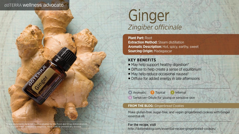 Doterra ginger oil